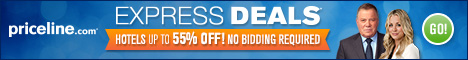 Priceline sales promotional banner savings FlexOffers