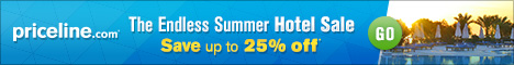 Priceline.com FlexOffers.com affiliate marketing sales promotional banner blog