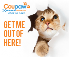 FlexOffers.com, affiliate, marketing, sales, promotional, discount, savings, deals, banner, blog, National Cat Day, Cat Day, cats, kitties, Coupaw.com, Puritan's Pride, Target.com, Saks Fifth Avenue, PetSmart, PetCareRx, Only Natural Pet