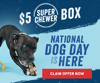 FlexOffers.com, affiliate, marketing, sales, promotional, discount, savings, deals, bargain, banner, blog, National Dog Day 2018 Rebates, National Dog Day, Dog Day, dog, puppy, pupper, Super Chewer, Good Life® Bark Control, PETCO Animal Supplies, Petsuppliesly, PetCareRx, Dog.com, animals, pets, pet accessories, training, pet care, medical supplies