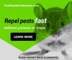 FlexOffers.com, affiliate, marketing, sales, promotional, discount, savings, deals, bargain, banner, blog, Snow Day Discounts, Snow Day, Good Life® Pest Repellers, Columbia Sportswear, Columbia, clothing, apparel, jackets, winter, pests, pest control, Wolverine, shoes, boots, footwear, HockeyMonkey.com, hockey, Newegg.com, computers, PCs, tablets, tech, appliances, Funko, POP!, collectibles, vinyl, toys