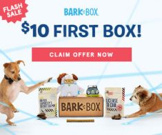 FlexOffers.com, affiliate, marketing, sales, promotional, discount, savings, deals, bargain, banner, blog, BarkBox, Super Chewer, Good Life® Bark Control, Chewy.com, PETCO Animal Supplies, Loews Hotels (US), dogs, pets, puppy, National Puppy Day, Puppy Day, Fetching National Puppy Day Offers, travel, hotels
