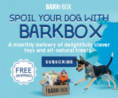 FlexOffers.com, affiliate, marketing, sales, promotional, discount, savings, deals, bargain, banner, blog, National Puppy Day Bargains, BarkBox, Hulu, Chewy.com, PetCareRX, Bissell, Purple, chew toys, movies, dry dog food, pet care, health, vacuums, dog beds