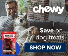 FlexOffers.com, affiliate, marketing, sales, promotional, discount, savings, deals, bargain, banner, blog, Chewy.com, BarkBox, Petco Animal Supplies, Rover Pet SITTERS, Super Chewer, International Open Academy | Online Courses, toys, treats, apparel, pet sitter, food, drink, pet care, school, course, class